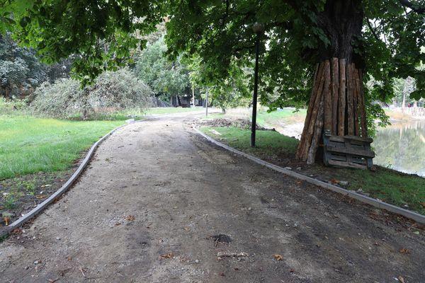 prace w parku wiosny ludow, zdjęcie 12/20