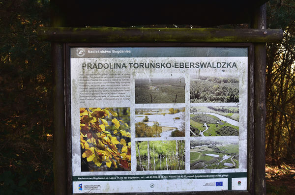 20xi2020 - z szacunkiem do przyrody i czlowieka, zdjęcie 22/29