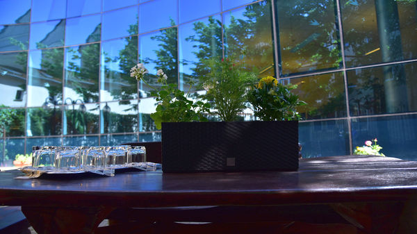 biblioteczne patio zaprasza, zdjęcie 4/16