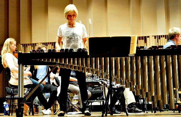 jutro zagra przesliczna marimbafonistka, zdjęcie 5/19