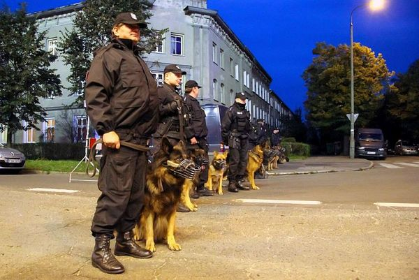 policja po wygranym meczu stali z falubazem  dwie, zdjęcie 14/30