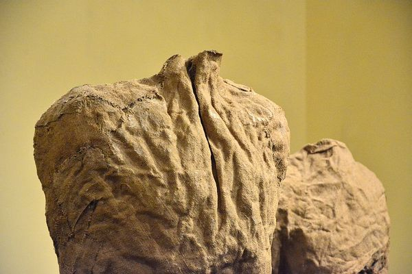 magdalena abakanowicz samotnie, zdjęcie 5/11