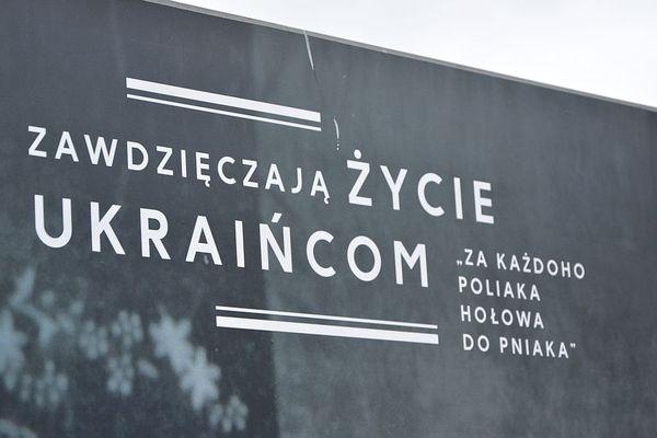 wolaja z grobow ktorych nie ma czyli refleks, zdjęcie 4/21