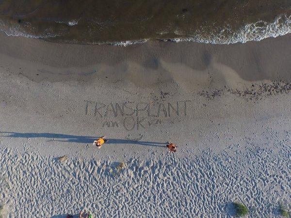 spelnily marzenie transplant ok, zdjęcie 12/20