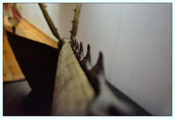 etnograficzny gorzow, zdjęcie 24/41