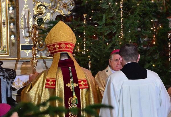 tadeusz litynski biskupem diecezji, zdjęcie 28/29