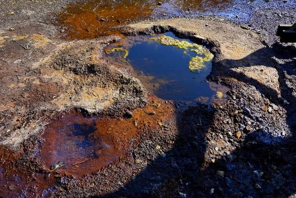 geopark uk muzakowa , zdjęcie 57/88