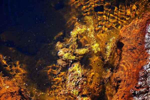 geopark uk muzakowa , zdjęcie 63/88