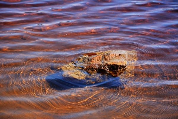 geopark uk muzakowa , zdjęcie 77/88