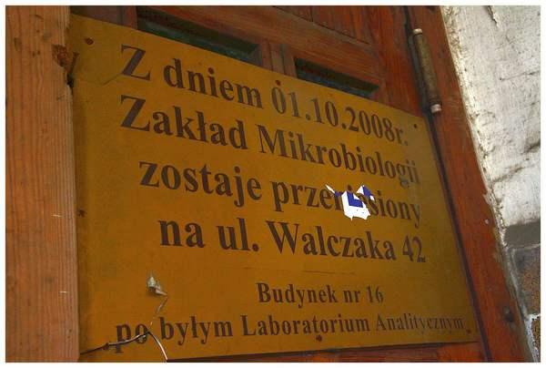 martwa sikorka symbolem zamknietego szpitala , zdjęcie 3/24