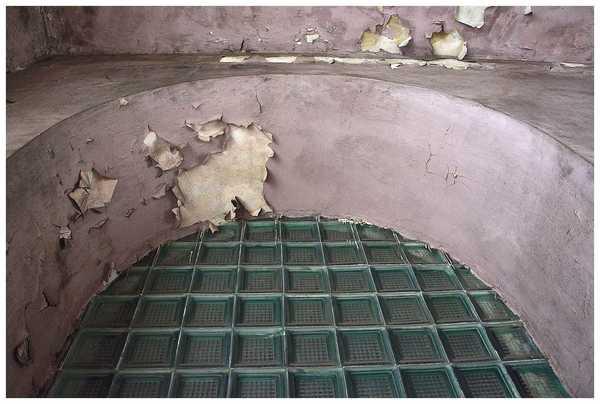 martwa sikorka symbolem zamknietego szpitala , zdjęcie 5/24