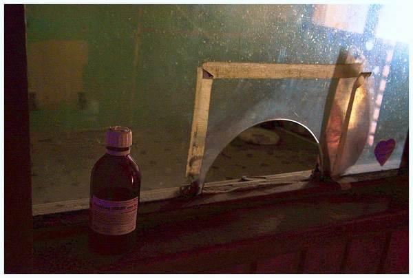 martwa sikorka symbolem zamknietego szpitala , zdjęcie 6/24