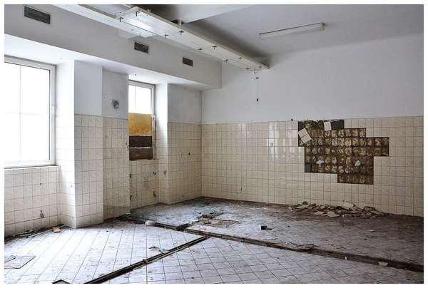 martwa sikorka symbolem zamknietego szpitala , zdjęcie 23/24
