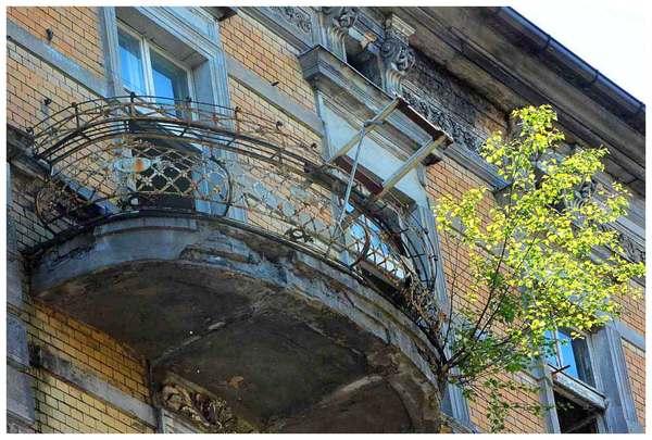 drzewa wyrastaja z balkonow, zdjęcie 3/4