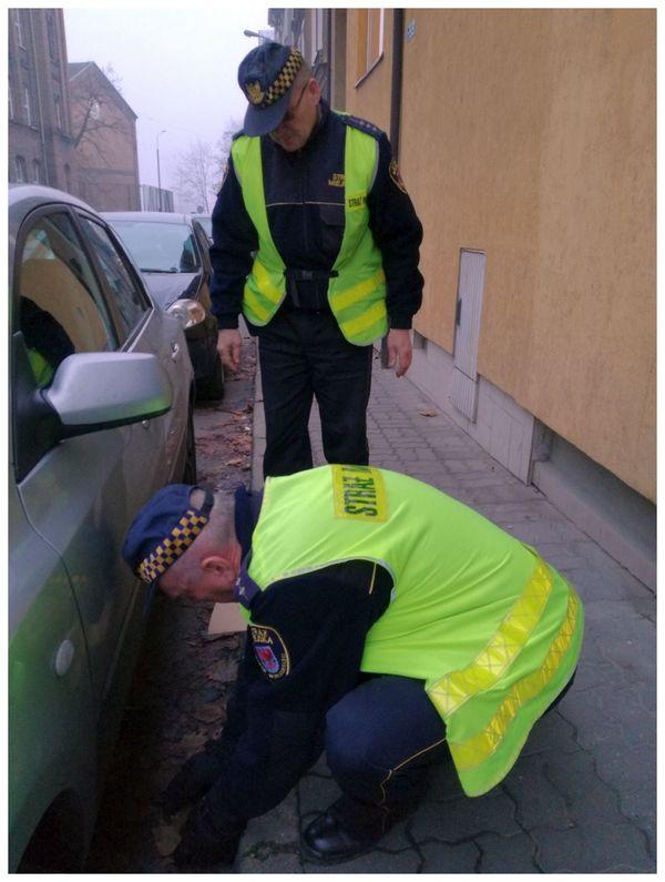 amelka i hania znalazly pod autem , zdjęcie 4/8