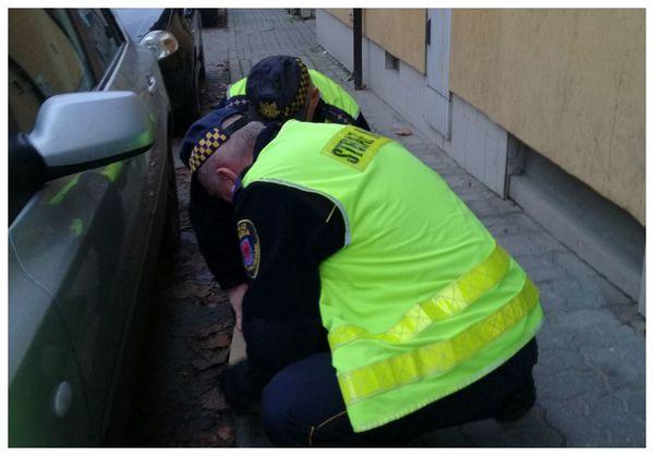 amelka i hania znalazly pod autem , zdjęcie 5/8