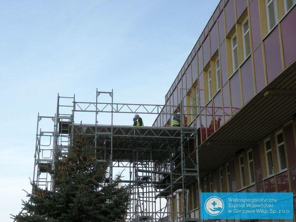 pet w gorzowskim szpitalu, zdjęcie 2/34
