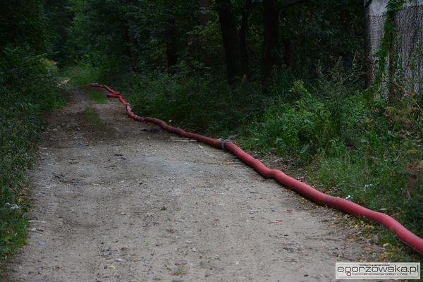 prawie dwa kilometry wezy i 60 tys litrow wody, zdjęcie 6/23