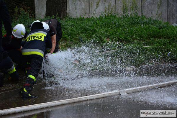 prawie dwa kilometry wezy i 60 tys litrow wody, zdjęcie 10/23