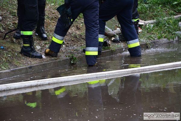prawie dwa kilometry wezy i 60 tys litrow wody, zdjęcie 11/23