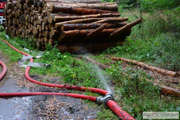 prawie dwa kilometry wezy i 60 tys litrow wody, zdjęcie 15/23