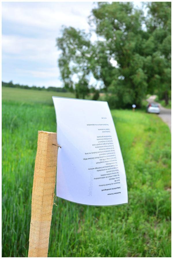 poszli z poezja w pole, zdjęcie 20/33