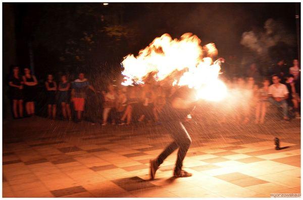 xi nocny szlak kulturalny za nami, zdjęcie 41/42