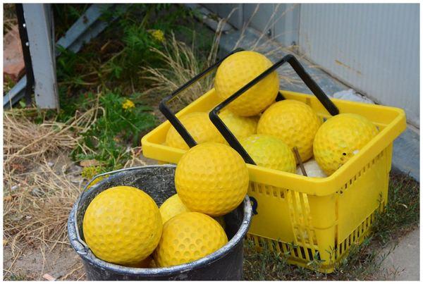 pole golfowe zawarcie ma prawdziwego menagera, zdjęcie 12/20